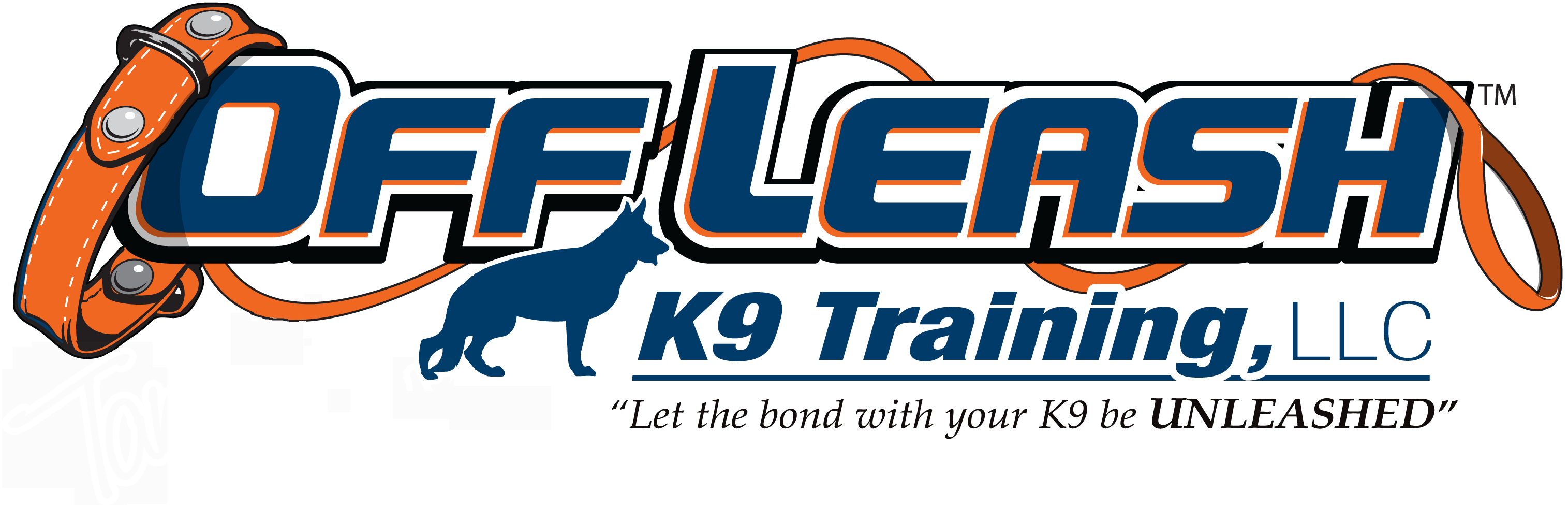 Albany Off Leash K9 Dog Training