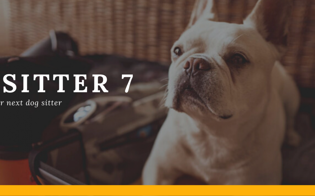 The Sitter 7: How to Screen Your Next Dog Sitter